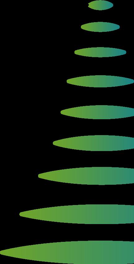 Ponderosa Tree Graphic